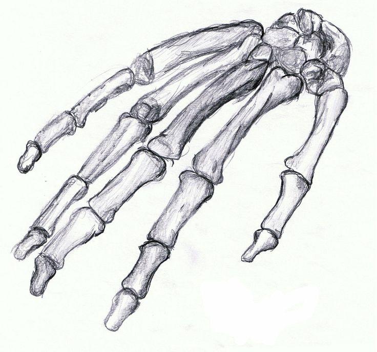 Картинки кости карандашом