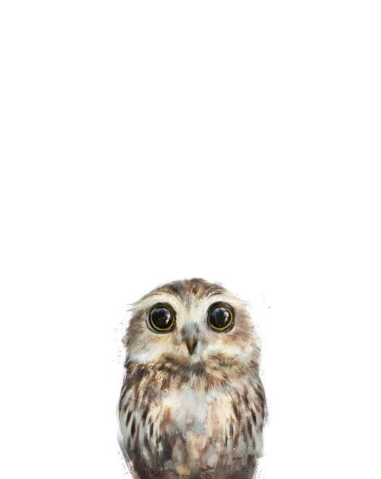 Little Owl Art Print//