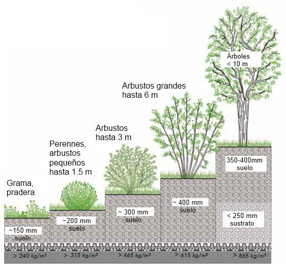 Cinco ejemplos de Sistema de Techo Verde Iintensivo.
