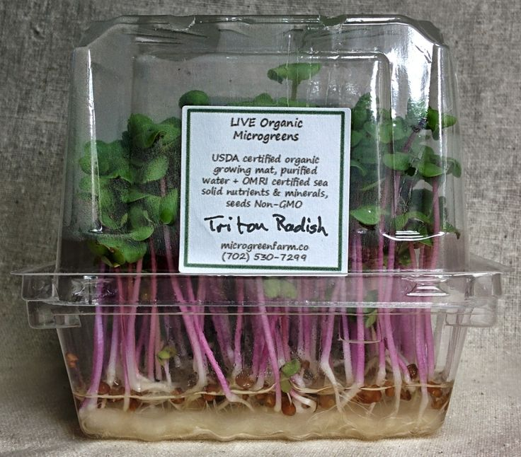 Pin On Microgreen Packaging & Label Designs