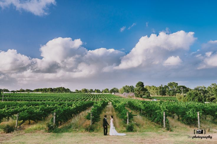 Sandalford winery wedding Swan Valley Perth.