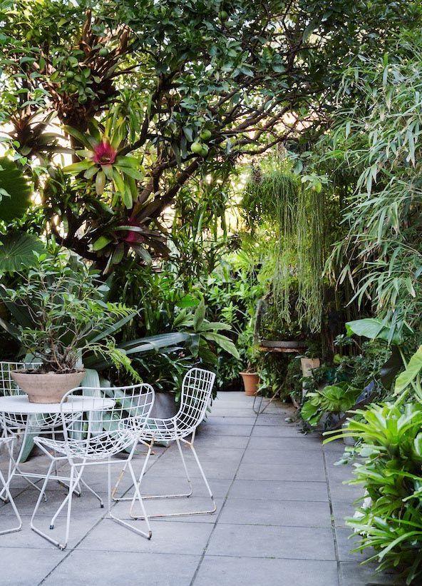 Sydney Garden · Ian McMaugh   The Design Files   Bloglovin'