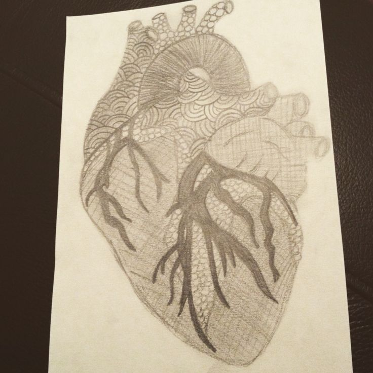 My heart drawing