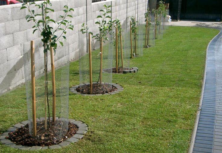 Záhradná architektúra podľa odborníkov - trendy, inšpirácie a fotogaléria - Veselé bývanie