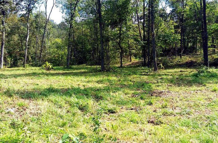 30 Acres Great For Hunting With Lots Of Deer!