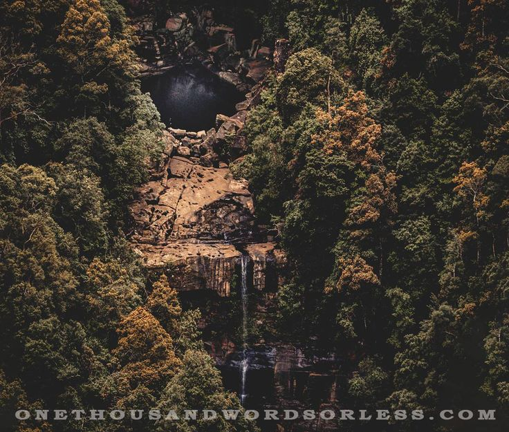 Australian Fine art and Landscape Photography.  Belmore Falls in the beautiful Morton National Park, New South Wales, Australia  #belmorefalls #waterfall #landscapephotography #fineartphotography #trees #fallcolor #autumn #rock #cliff #travel #travelaustralia #travelphotography #onethousandwordsorless #newsouthwales #Australia #nationalpark #nature