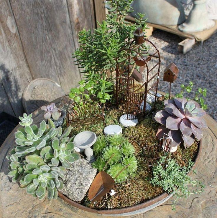 mini jardim de cactus: Jardinería De Hadas, Jardines De Hadas En Miniatura y Casas De Hadas