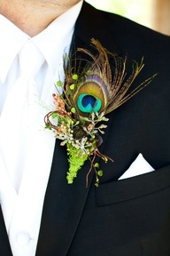 Peacock feathers in bouquets and boutonnières