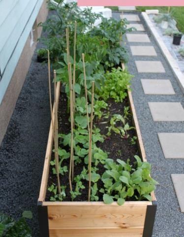 DIY {Raised Garden Bed} in {5 Simple Steps!}