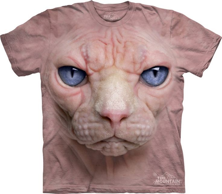 Hairless Pussycat T-Shirt - Click image to see hundreds of different animal t-shirts #themountaintees