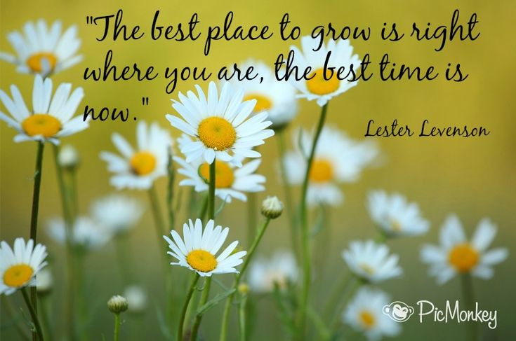 The best place to grow is right where you are, the best time is now ~ Lester Levenson #quote