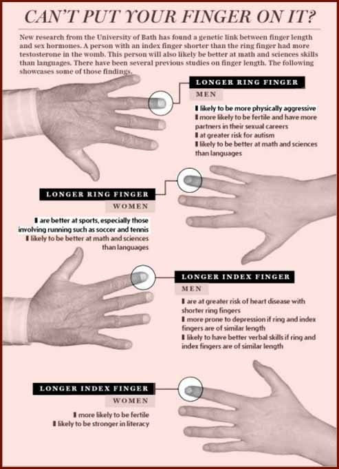 ring finger length and sexuality in Pennsylvania