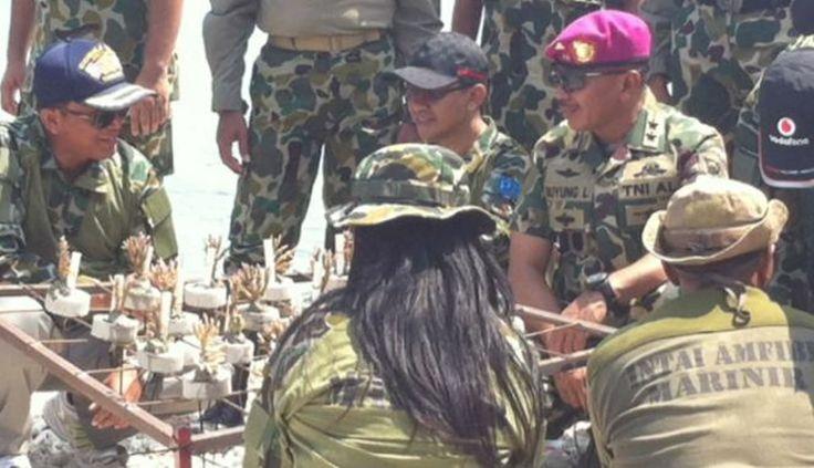 Marinir Bertindak Melihat Kondisi Terumbu Karang Memprihatinkan