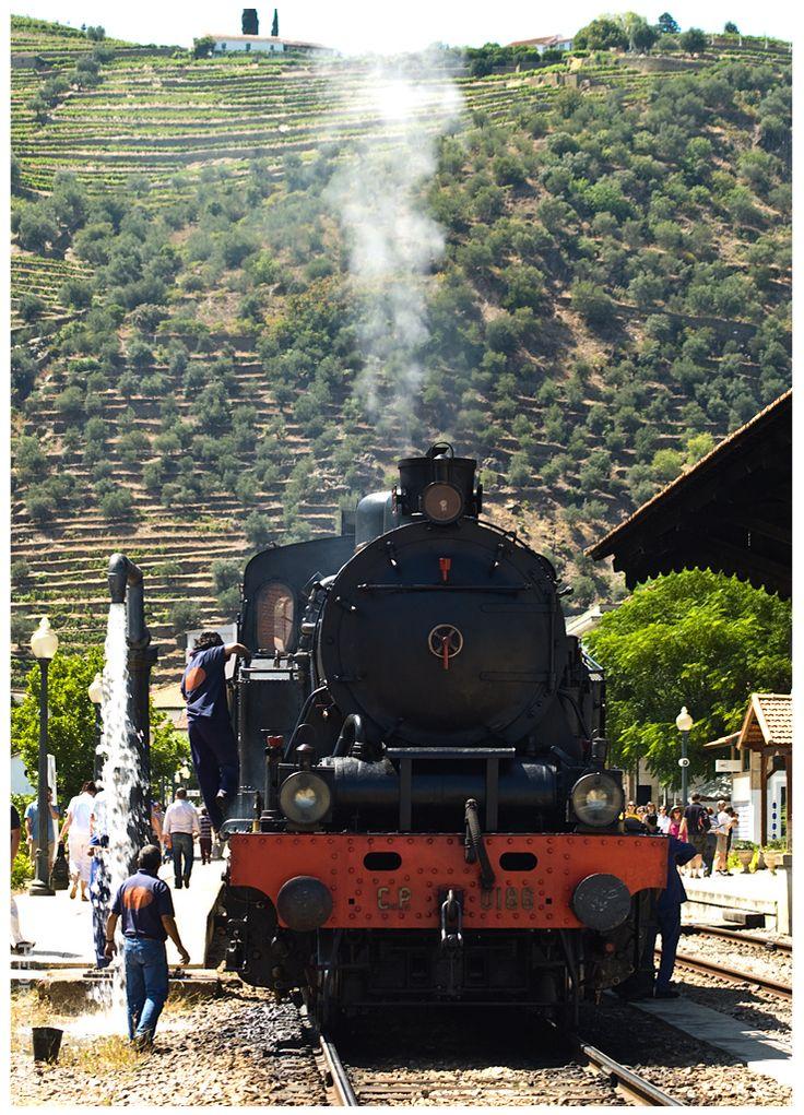 https://flic.kr/p/d2MSMd | Pinhão 19-07-09 | Locomotiva nº186 com o Comboio Histórico do Douro ( Régua -> Tua)