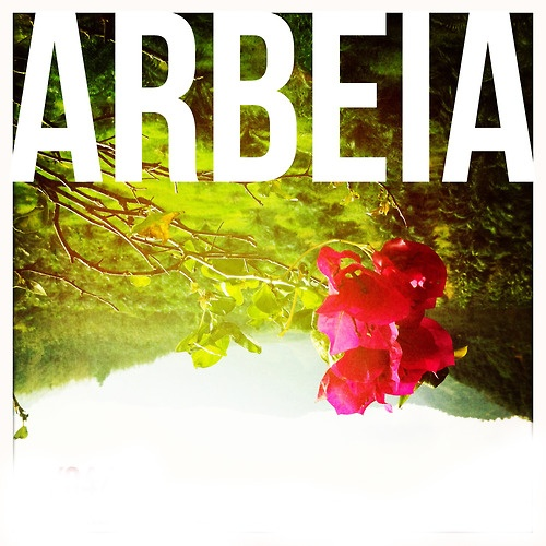 Artist Focus #027 - Arebia  Dreamy melodies and syncopated beats from Arbeia on today's #EvoE13 artist focus piece.