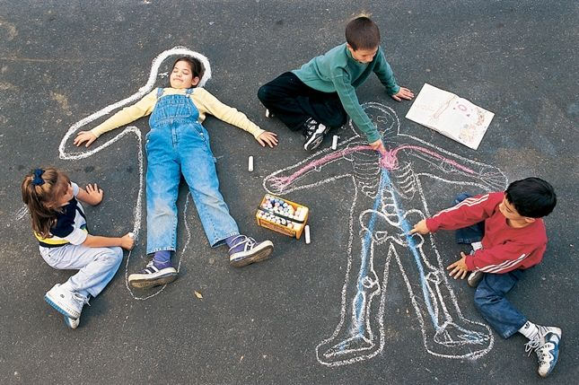 """Bones & Body Parts craft - draw your """"insides"""" in a life-size chalk portrait"""