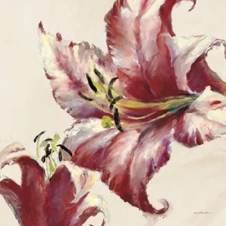 Blooming Lily On Cream Canvas Art - Brent Heighton (24 x 24)