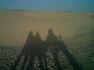 Centaure mi ombre mi dromadaire, ombre et lumière, les frontières deviennent floues Douz 2011 ©  by by nc sa Margarita Modroño