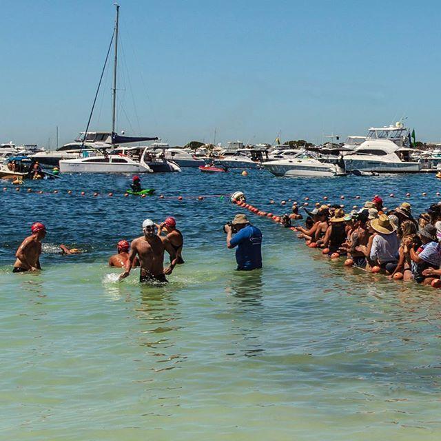3/3 - Outstanding effort from all swimmers today #ExperienceKarma #KarmaResorts #KarmaRottnest #KarmaResortsRottnestChannelSwim #RottoSwim #Perth #WesternAustralia