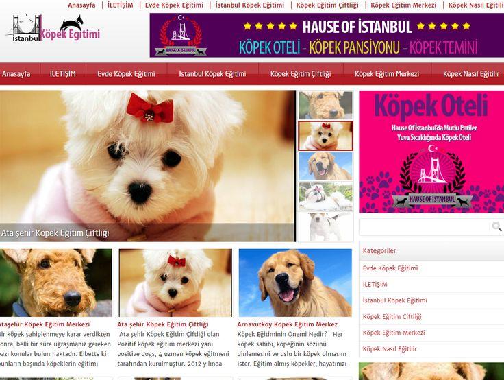 www.istanbulkopekegitimi.net köpek eğitimi istanbul