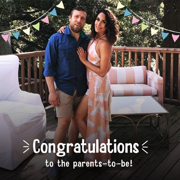 Brie Bella Is Pregnant! Total Bellas Star Is ''So Excited'' to Be Expecting Her First Child With Husband Daniel Bryan