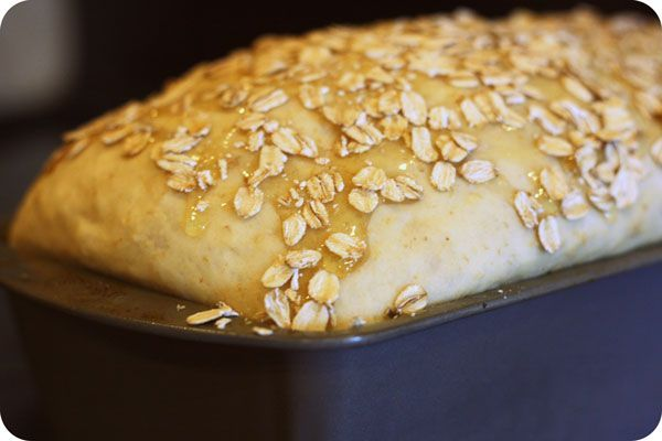 Honey Oat Bread - drizzle honey + oats over it before you bake. To DIE FOR! happymoneysaver.com