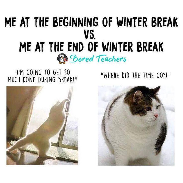 25 Best Funny Education Quotes On Pinterest: Best 25+ Funny Teacher Jokes Ideas On Pinterest