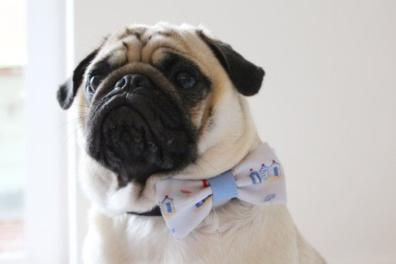 This listing is for ONE Dog/Cat Bow Tie in the size of your choice (see guide for details) Each lovingly crafted bow tie is made with 100% cotton or