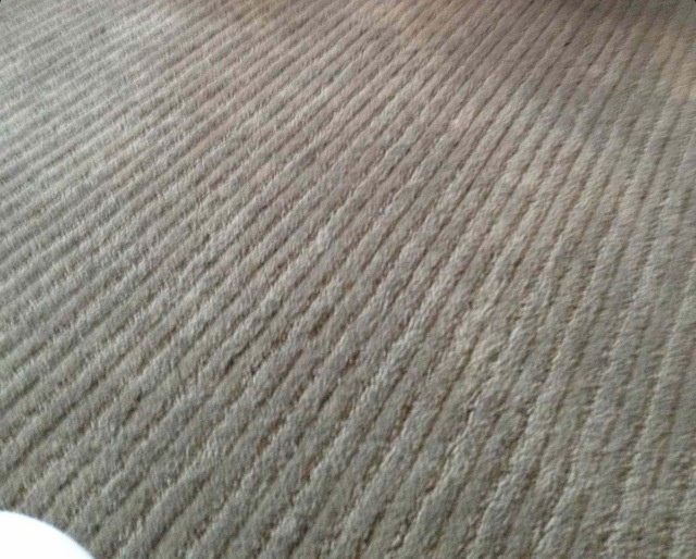 17 Best Images About Carpet On Pinterest Shaw Carpet