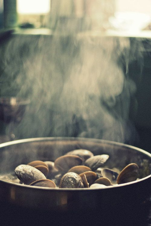 Clams, Linguine and Fennel on Pinterest