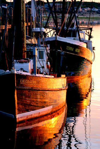 Provincetown Fishing Boats at Sunrise  Two fishing boats sit in the early morning sun at the wharf in Provincetown, awaiting the start to their day...