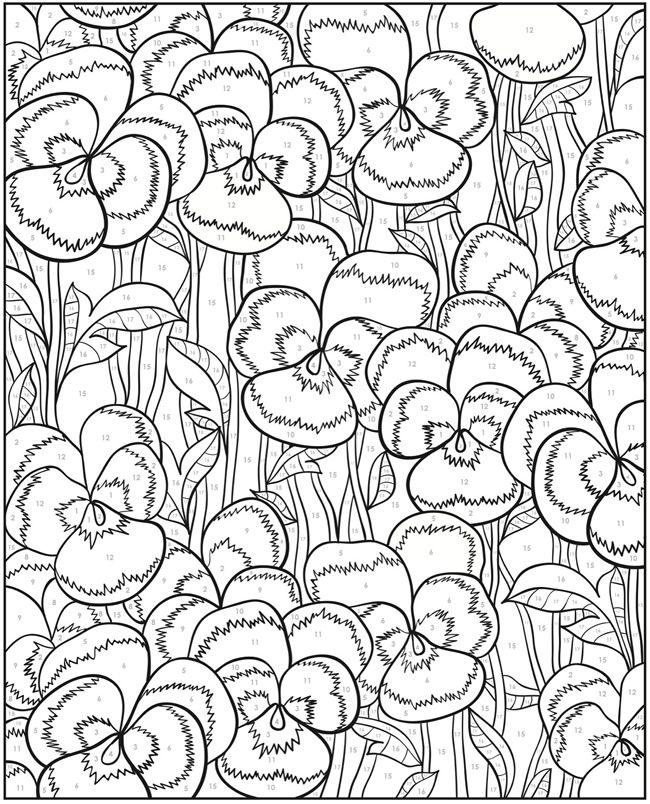 pansies free printable flower coloring page