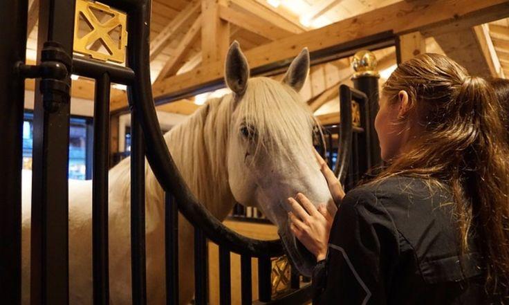Équitation : Le sport féminin en vogue en France - Sur les 550 000 femmes à posséder actuellement une licence d'équitation, quelle que soit la tranche ...