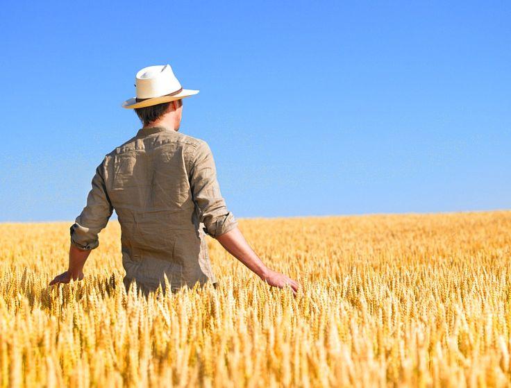 Phil Hogan all'assemblea annuale del Ceja, il Consiglio europeo dei giovani agricoltori, affronta la questione del ricambio generazionale e del futuro dell'agricoltura europea  Largo ai...