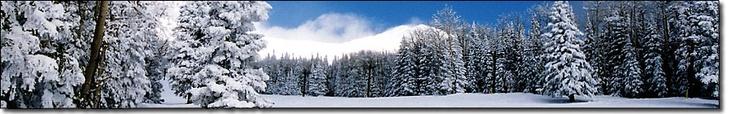 Mt Hood Ski, Snowboard, Snowshoe, Cross Country Ski Rental Rates Government Camp-Mountain Tracks Ski and Snowboard Shop