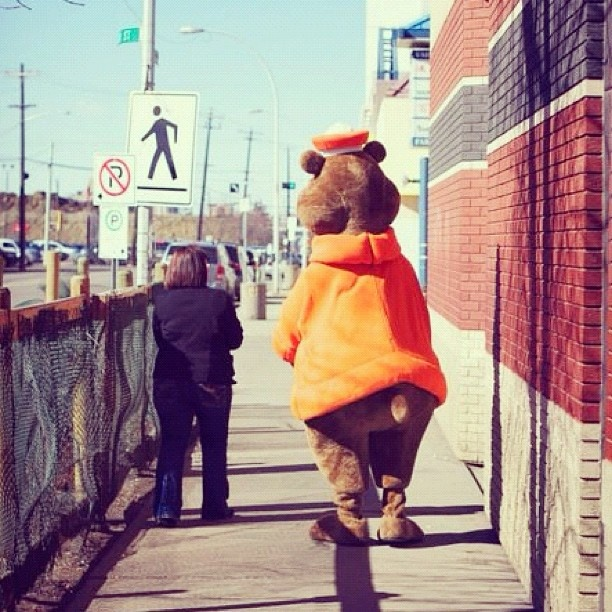 The A Bear showed up to Hope Mission for a visit. #yeg #hope #instagram