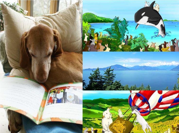 Come on Smokey I know you can save the Island of Rabbitina! thought Balou as he continued to read his book.