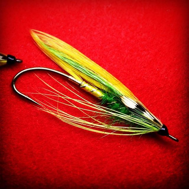 1000 images about feather wing streamers on pinterest for Fly fishing feathers
