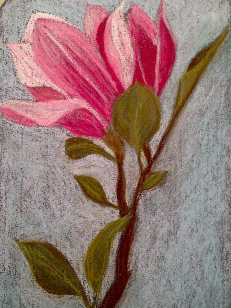 Magnolia Flower. Soft pastel on Canson paper, 15x24 cm. Copyright Sandy Rosenvinge Lundbye.