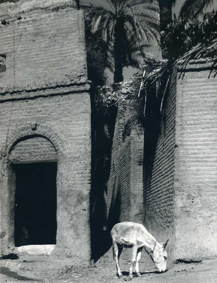 Paul Strand: México en 1933