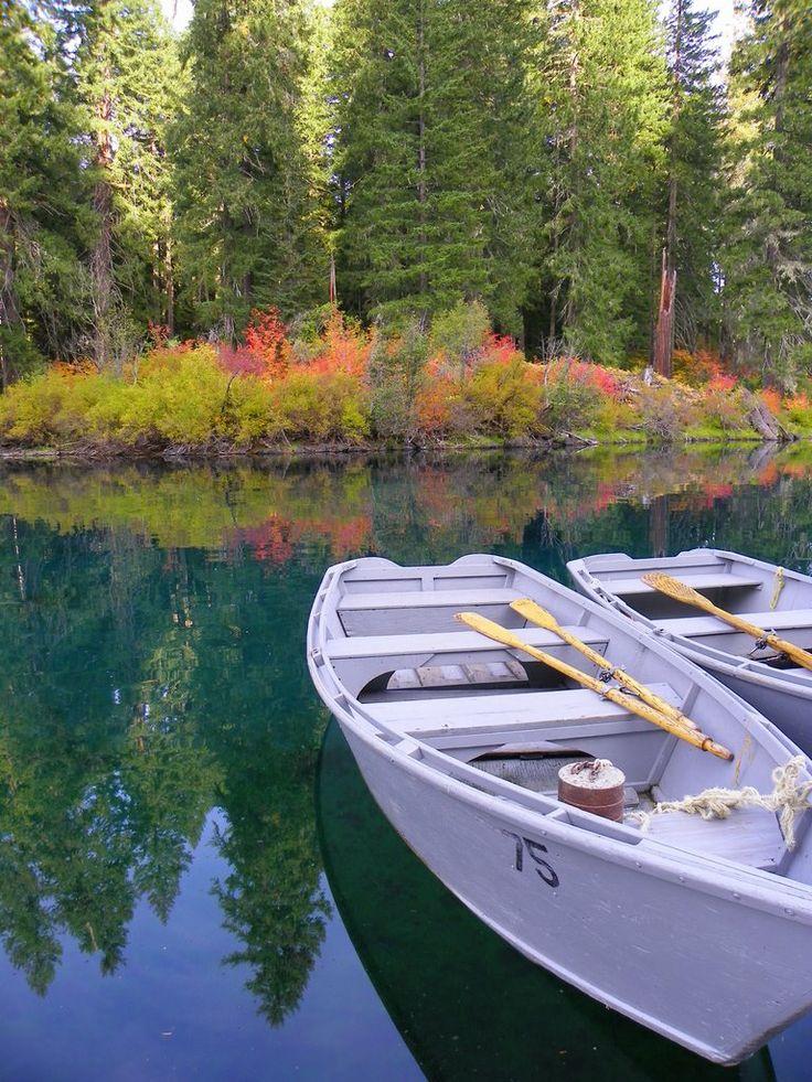 Clear lake oregon adventures pinterest for Clear lake oregon fishing