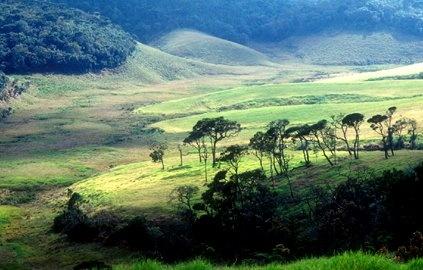 hortain plains