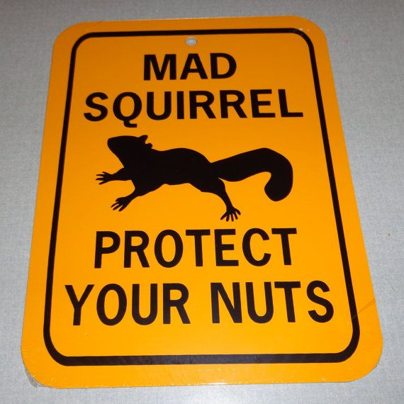 Mad Squirrel Protect Your Nuts Funny Squirrel Sign 6x8 inch Aluminum metal garden sign For Eric's parents