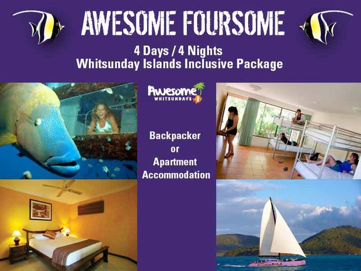 To #save planning time, #Awesome #Whitsundays provide 3 to 6 night self-catering #accommodation #packages featuring some of #Cruise #Whitsundays best #Whitsundays experiences. The #packages are #designed to #suit any #budget with #backpacker and #apartment accommodation options available. #holiday #ideas #away #vacation #escape #travel #queensland #australia #thisisqueensland #lovewhitsundays #awesome #foursome