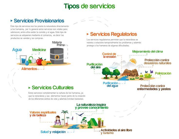 BanCO2 :: Servicios Ecosistémicos