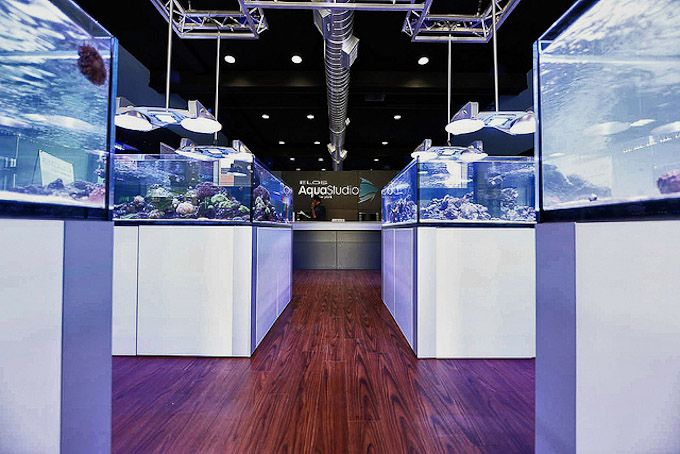 I wish this store was in my city. On the other hand: I'd be broke in a month - Elos AquaStudio New York grand opening reveals a gorgeous, classy reef aquarium store
