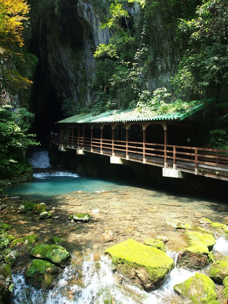 Shuhodo-Limestone-Cave Tourism - Akiyoshidai_Quasi_National_Park|Traverse Japan