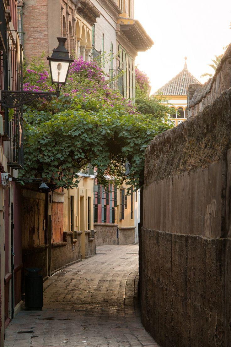 Calle Agua, Barrio de Santa Cruz, Seville_ Spain