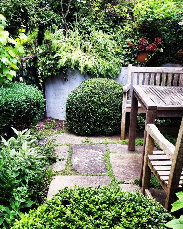 Formal courtyard garden design