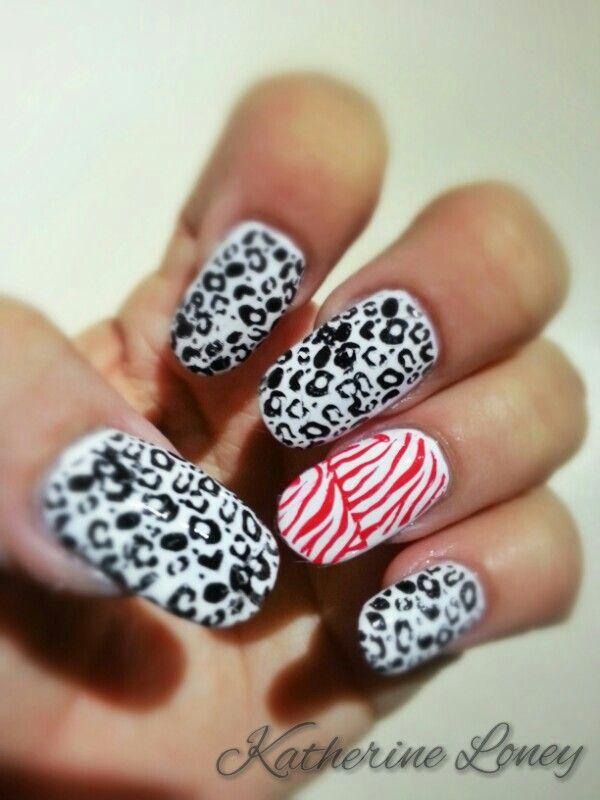Leopard and zebra love